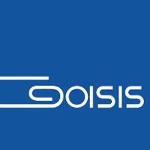 Goisis | Sistemi di stampa Logo